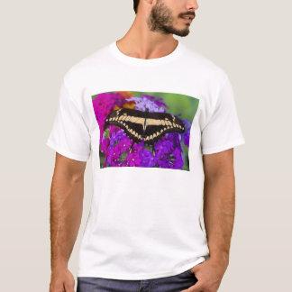 Sammamish, Washington Tropical Butterfly 36 T-Shirt