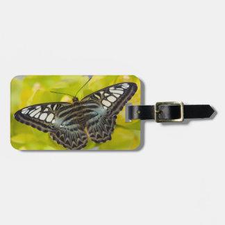 Sammamish, Washington Tropical Butterfly 38 Bag Tag