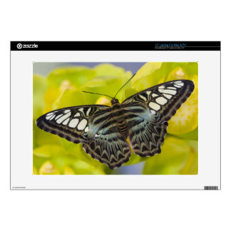 """Sammamish, Washington Tropical Butterfly 38 Decals For 15"""" Laptops"""