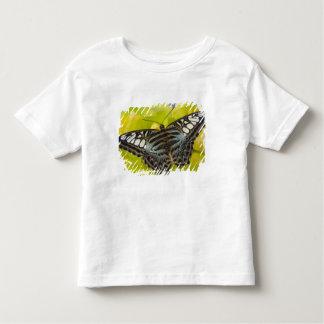 Sammamish, Washington Tropical Butterfly 38 Toddler T-shirt
