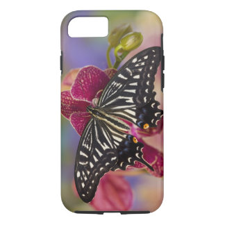 Sammamish, Washington Tropical Butterfly 3 iPhone 7 Case