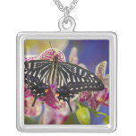 Sammamish, Washington Tropical Butterfly 43 Square Pendant Necklace
