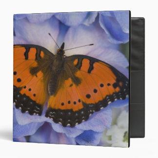 Sammamish Washington Tropical Butterfly 4 3 Ring Binder