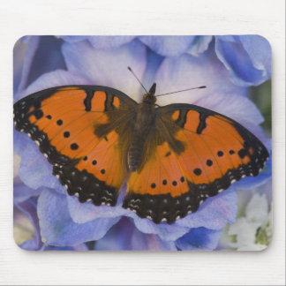 Sammamish Washington Tropical Butterfly 4 Mouse Pad