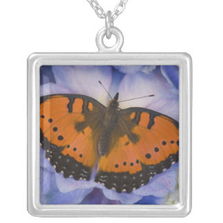 Sammamish Washington Tropical Butterfly 4 Square Pendant Necklace