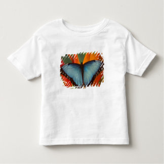 Sammamish Washington Tropical Butterfly 5 Toddler T-shirt