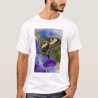 Sammamish, Washington Tropical Butterfly 6 T-Shirt