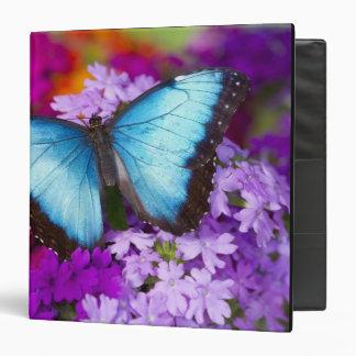 Sammamish Washington Tropical Butterfly 7 3 Ring Binder