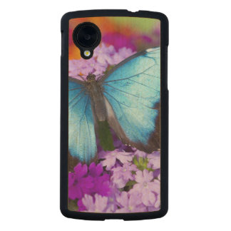 Sammamish Washington Tropical Butterfly 7 Carved® Maple Nexus 5 Slim Case