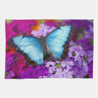Sammamish Washington Tropical Butterfly 7 Hand Towel