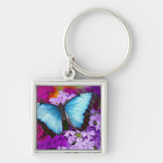 Sammamish Washington Tropical Butterfly 7 Silver-Colored Square Keychain