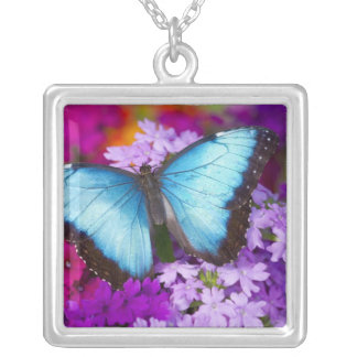 Sammamish Washington Tropical Butterfly 7 Silver Plated Necklace