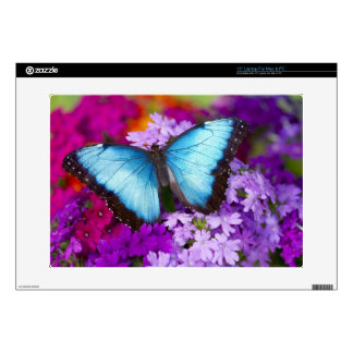 """Sammamish Washington Tropical Butterfly 7 Decals For 15"""" Laptops"""