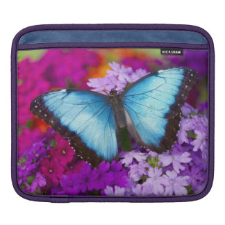 Sammamish Washington Tropical Butterfly 7 Sleeve For iPads