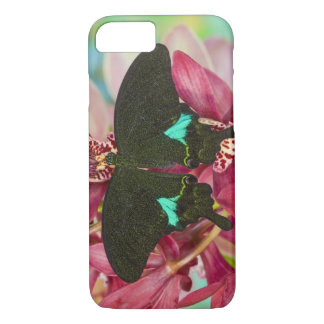 Sammamish, Washington Tropical Butterfly 9 iPhone 7 Case