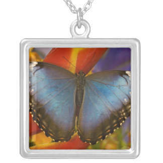 Sammamish Washington Tropical Butterfly 9 Silver Plated Necklace