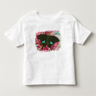 Sammamish, Washington Tropical Butterfly 9 Tee Shirt