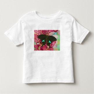 Sammamish, Washington Tropical Butterfly 9 T-shirts