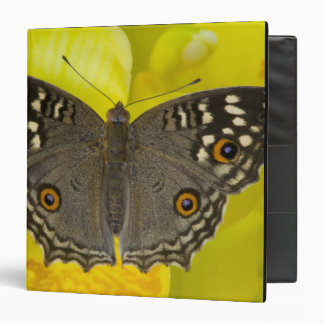 Sammamish Washington Tropical Butterfly Vinyl Binders