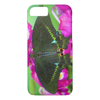 Sammamish, Washington Tropical Butterfly iPhone 7 Case
