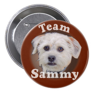 Sammy button