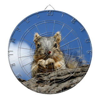 Sammy Squirrel and the Blue Sky Dartboard With Darts