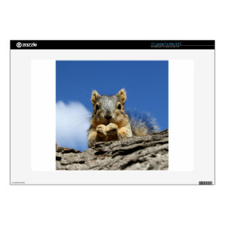 "Sammy Squirrel and the Blue Sky Decal For 15"" Laptop"