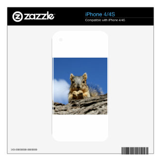 Sammy Squirrel and the Blue Sky iPhone 4S Skin