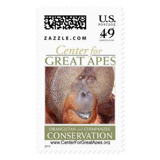 Sammy Stamps