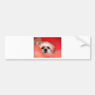 Sammy the beautiful flower bumper sticker