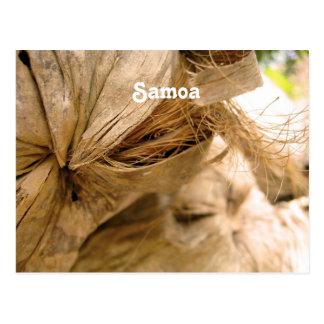 Samoa Coconut Postcard
