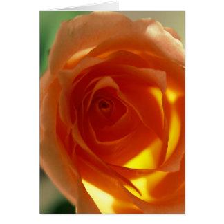 Samon Rose Greeting Card