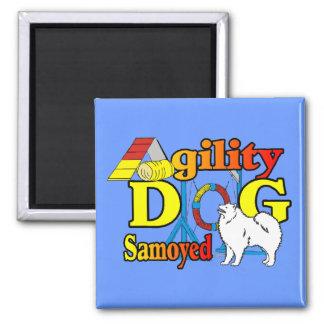 Samoyed Agility Gifts Magnet