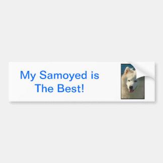 Samoyed Bumper Sticker