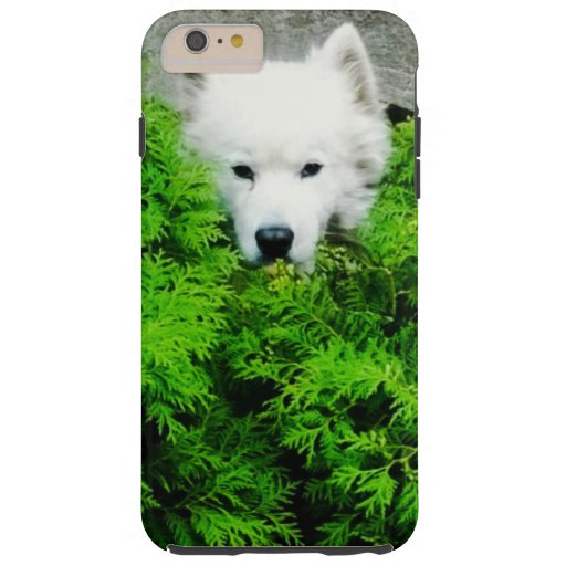Samoyed Tough iPhone 6 Plus Case