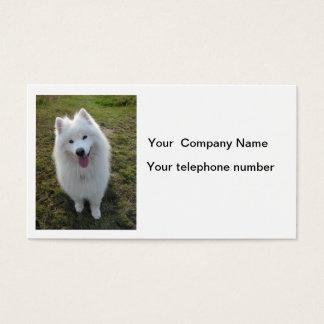 Samoyed dog beautiful photo business card