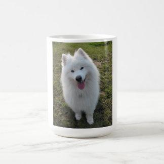 Samoyed dog beautiful photo coffe or tea mug