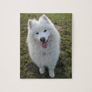 Samoyed dog beautiful photo jigsaw puzzle