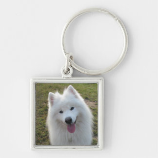 Samoyed dog beautiful photo keyring, keychain