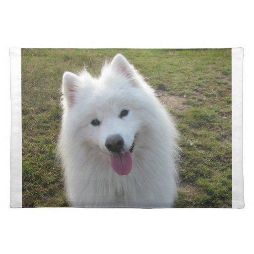 Samoyed dog beautiful photo table placemat