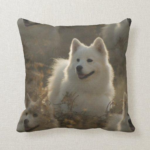 Samoyed Dog Breed Pillow