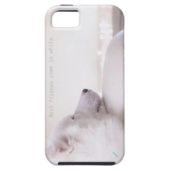 Samoyed dog,  iPhone 5/5s Case