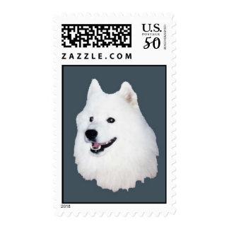 samoyed face3 postage