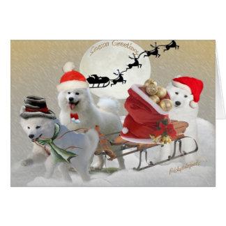 Samoyed Friends Sledding Cards