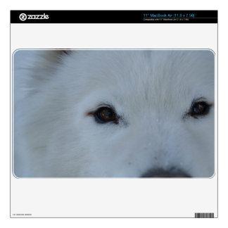 """Samoyed Macbook Air Skin For 11"""" MacBook Air"""