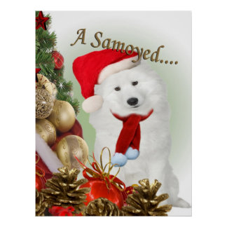 Samoyed Merry Christmas Poster