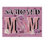 Samoyed MOM Postcard