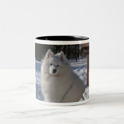 samoyed mugs