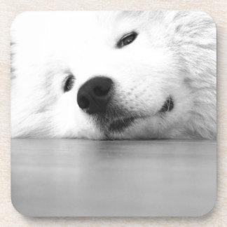Samoyed Photo Dog White Beverage Coaster