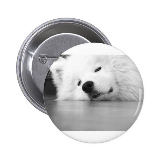 Samoyed Photo Dog White Button